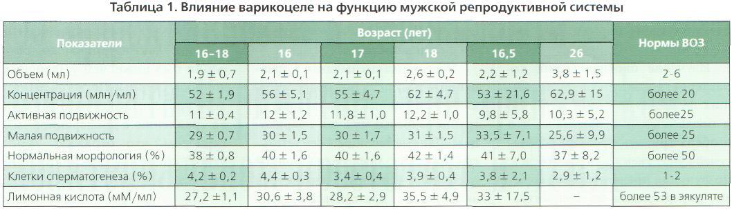 Размер яичек у мужчин норма
